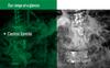 Synthetic Coolants -- Castrol Syntilo