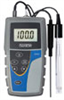 Oakton Ion 6+ Handheld Meter Kit w/ Case, Solutions, and pH/ATC Probe -- GO-35613-82