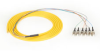 OS1 Single-Mode Fiber Optic Pigtail, 6-Strand, ST, Yellow, 3-m (9.8-ft.) -- FOPT50S1-ST-6YL-3