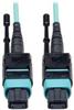 Fiber Optic Cables -- N844-10M-12-P-ND -Image