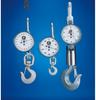 Crane Scales -- AP Crane Scale