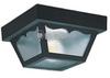 Two-Light Outdoor Ceiling Light Fixture -- 7569-32