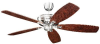 5RYEP Fans-Ceiling Fans -- 391996