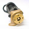 Brushless DC Seal-Less Pump -- 12 Gallon - Image