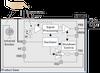 Proximity Sensor -- Si1102