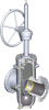 WKM® Gate Valve -- Pow-R Model E1C Series - Image