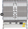 High-Capacity Access Node -- 7302 Intelligent Services Access Manager