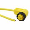 Circular Cable Assemblies -- KW0300107YL357-ND -Image