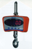 FED-CS SERIES CRANE SCALE -- HFED-CS500
