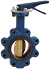 Butterfly Valve - Cast Iron, International, Aluminum Bronze Disc -- N200245