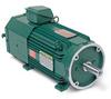 AC Laminated Frame, Variable Speed, RPMAC Motor, 30 HP