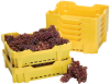 Shed Pack Grape Crate