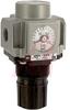 Regulator; Modular; 1/4NPT ports; panelmount; square gauge in imperial units -- 70070497