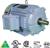 Explosion Proof Motors-Rigid Base, Rigid Base -- XHHI250-18-449TBB -Image