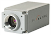 PL-B741 1.3 Megapixel GigE CMOS NIR Camera Right Angle -- NT64-196 - Image