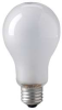 Incandescent Reflector Lamp,PS25,500W -- ECT