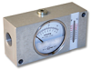 Inline Flow Indicator With Temperature Sensor, FI750 Series, Up to 48 GPM -- HC-FI750-016