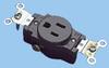 NEMA 5-15 Single Receptacle -- 88031010 -Image