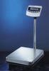 Platform Scale -- CAS-BW