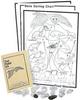Classroom Owl Pellet Kit -- 14A