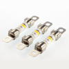 Hybrid Electric Vehicle Fuses -- 0HEV020.SXC -Image
