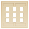 Datacommunication Face Plate -- IFP29EI - Image