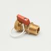 Boiler Drain Valve -- S812MNH RB