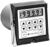 Eagle Signal Controls CX300 Cycle Flex Timer-Counter -- CX312B6
