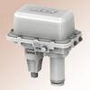Linear Globe Valve Actuator -- Model 29-250