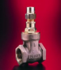 """D237 Gate Valve (2.1/2"""" and 3"""") -- View Larger Image"""