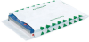 Expandable Tyvek® Envelopes, 10