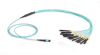 OM3 Fiber Optic Harness Cable, 12-Strand MTP MPO-Style to (12) LC Multimode, Plenum, 1-m (3.2-ft.) -- FOHC20M3-MPLC-12AQ-1