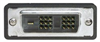 Deluxe DVI-D Single Link DVI Cable Male/Male w/Ferrites, 10.0 ft -- CGDVIMM-10 - Image