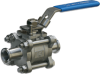Sanitary Valve -- MS-3TC Series