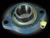 1 inch bore BLF 2-bolt compact Flange Mount Bearing -- MB-BLF205-16