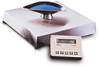 BENCH SCALES - Electronic, Digital, Washdown, Champ™, OHAUS®, B100AS20, 100/200, 0.02/0.05, 450 X 450 X 91 -- 1141024 - Image