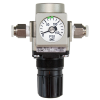 Inline Gas Regulator