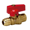 Two Piece Body Gas Ball Valve - FL X FL -- 463