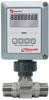 Blancett® Flow Monitor -- Model B2800