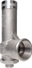 DN25 Enclosed Discharge Safety Relief Valve -- DN25