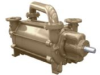Two Stage Liquid Ring Vacuum Pumps -- DV0951B-D