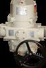PDO Series w/ Manual Override -- PDO-CCW-24xS4
