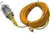 Vapor Proof (Waterproof) Trouble Light / Hand Lamp / Drop Light - 100 Watt Bulb - 100' Cord -- VPLHL-100W-100