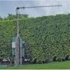 900 MHz 13 dBi SS Yagi Antenna RP SMA Plug Connector -- HG913Y-RSP