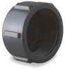 Pipe Cap,2 In,FPT,Poly,150 PSI,Black -- 1MJW7