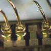Techni-Gold 434HS - Image