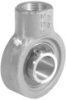 Screw Conveyor Hanger Bearings