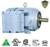 Explosion Proof Motors-C-Face, C-Face-Inverter Duty Motor -- IXHHI60-18-364TC