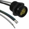Circular Cable Assemblies -- WM15354-ND -Image