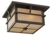 Two-Light Outdoor Ceiling Light Fixture -- 78880-51